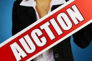 auction1-300x199[1]